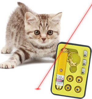 Power Beam Laser Pointer - #1206