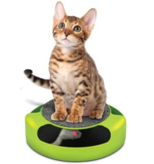 FinePet Feline Frenzy with Scratch Pad - #5893