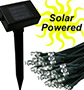 White 100 LED Solar String Lights - Simply Stunning - NEW LOW PRICE - #5989