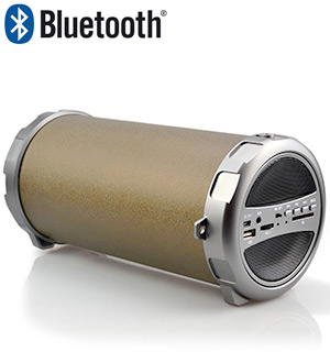 Bluetooth Indoor/Outdoor Wireless Speaker w/Subwoofer - #6912