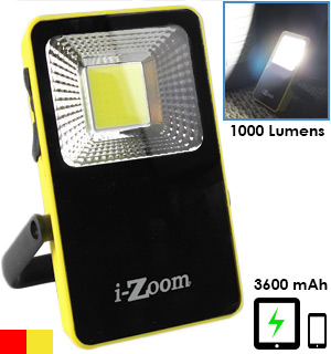 Portable 1000 Lumen Flood Light and Power Bank - #8076