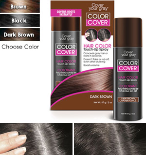 Cover Color Touch-Up Spray - #8347