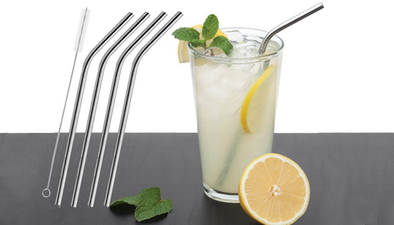 Set of 4 Reusable Stainless Steel Straws