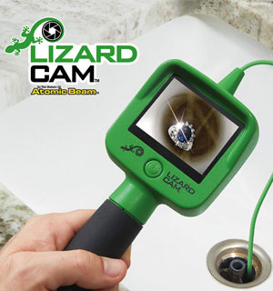 Lizard Cam by Atomic Beam