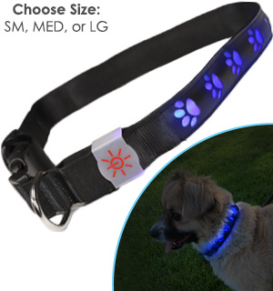 The Night Scout Illuminated Dog Collar - #8648