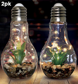 Light-up Terrarium Glass Light Bulbs - Set of 2 - #8791