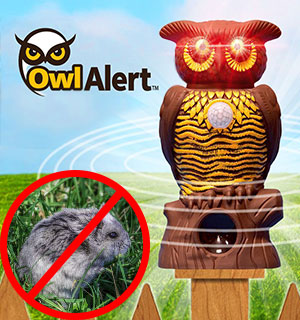 Owl Alert Ultrasonic Pest Repeller - #9033