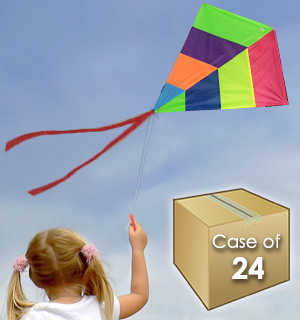 (Case Of 24) Easy To Fly 30 Inch Multi Colored Nylon Kite - #9125-CASE