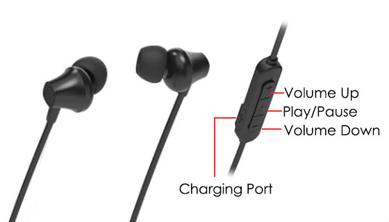 Wild Flag E-Series Magnetic Wireless Earbuds