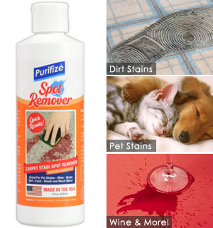 Purifize Spot and Stain Remover - #9684